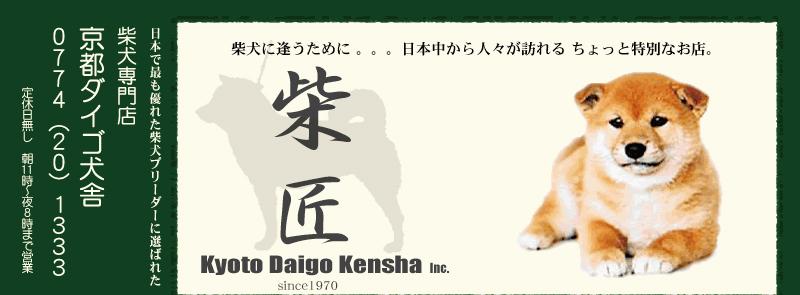 京都ダイゴ犬舎